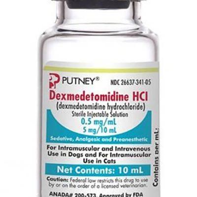Thuốc Dexmedetomidine: Thông Tin Thuốc, Tác Dụng, Giá Bán